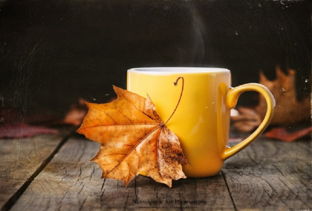 yellow_cup_autumn_stil_life_leaf_tea_hd-wallpaper-1880490